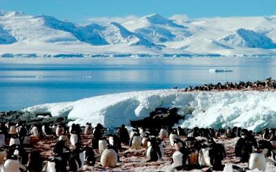 antarctic tours