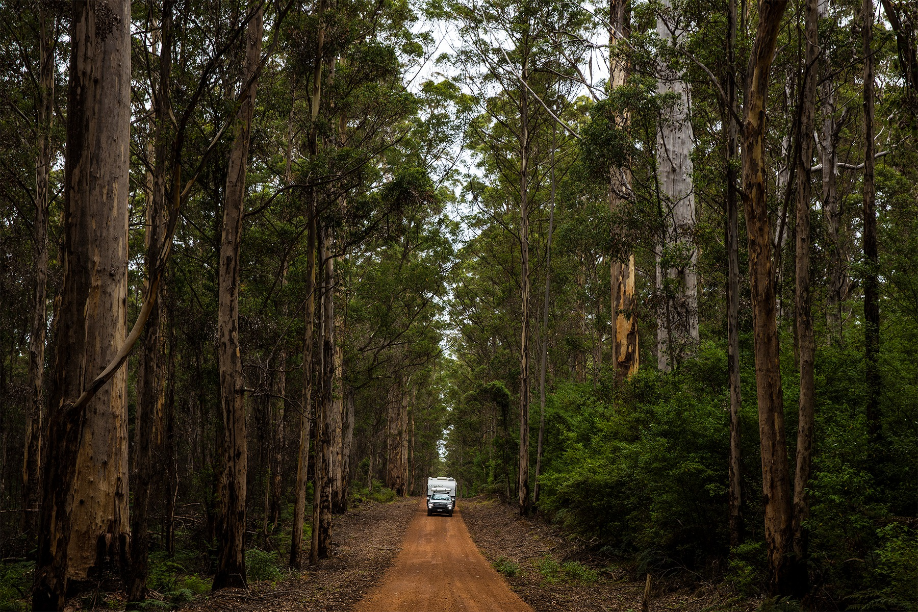 Perth & South Western Australia